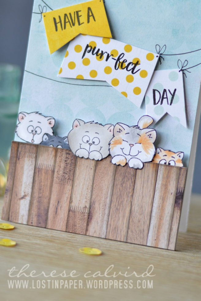lostinpaper-gerda-steiner-designs-buckets-of-love-card-video-1
