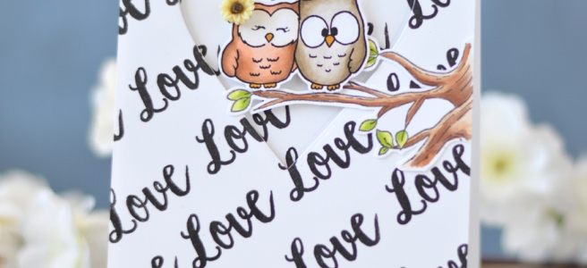 Lostinpaper - Gerda Steiner Designs - Fall in Love - Buckets of Love (card video) 1