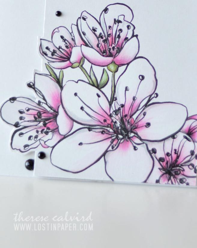 Lostinpaper - Ellen Hutson - Mondo Sakura - Prismacolor Pencils (card video) 1
