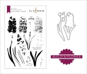 BAF: Hyacinth