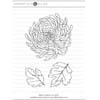 Mondo Chrysanthemum