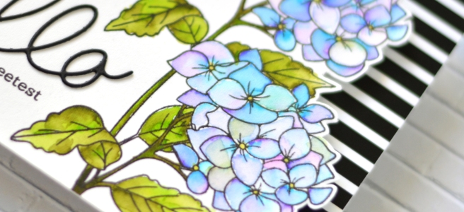Altenew - Paint A Flower - Hydrangea - Handwritten Hello Die - Therese Calvird (card video) 1 copy