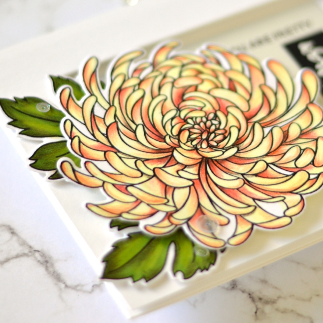 Flower Power - Mondo Chrysanthemum - Therese Calvird (card video) 3